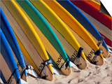 Row of Surfboards at Beach Prints by Randy Faris