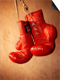 Red Boxing Gloves Poster
