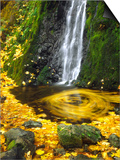 Starvation Creek Falls Creates a Maple Leaf Whirlpool on Water Posters by Steve Terrill