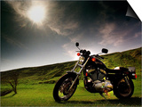 Harley Davidson Motorbike Sitting in Field, June 1998 Prints