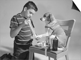 1950s Dog on Chair with Paw Being Bandaged Posters