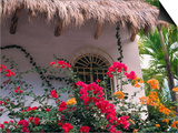 Bougenvilla Blooms Underneath a Thatch Roof, Puerto Vallarta, Mexico Prints by John & Lisa Merrill