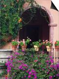 Bougainvillea and Geranium Pots on Wall in Courtyard, San Miguel De Allende, Mexico Poster von Nancy Rotenberg
