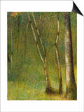 The Forest at Pontaubert Posters by Georges Seurat