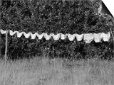 Underwear Hanging to Dry Prints by Owen Franken