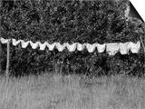 Underwear Hanging to Dry Prints by Owen Franken