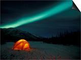 Camper's Tent Under Curtains of Green Northern Lights, Brooks Range, Alaska, USA Prints by Hugh Rose