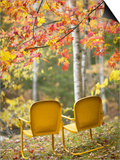 Yellow Chairs and Fall Foliage Poster by  Owaki - Kulla