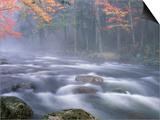 Big Moose River Rapids in Fall, Adirondacks, New York, USA Kunstdrucke von Nancy Rotenberg