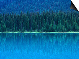 Emerald Lake Boathouse, Yoho National Park, British Columbia, Canada Posters by Rob Tilley