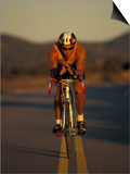 Road Biker, Santa Fe, New Mexico, USA Prints by Lee Kopfler