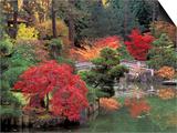 Kiri Pond and Bridge in a Japanese Garden, Spokane, Washington, USA Art by Jamie & Judy Wild