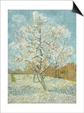 The Pink Peach Tree Prints by Vincent van Gogh