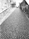 Cobbled Street, Lindenhof, Switzerland Posters by Walter Bibikow