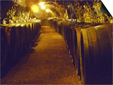 Wine Cellar with Tunnels of Wooden Barrels and Tokaj Wine, Royal Tokaji Wine Company, Mad, Hungary Prints by Per Karlsson