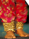 Indian Cultural Dances, Port of Spain, Trinidad, Caribbean Posters by Greg Johnston