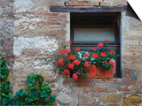 Flowers in a Window In a Tuscan Village, San Quirico d'Orcia, Italy Poster by Dennis Flaherty