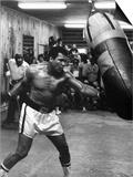 Boxeador Muhammed Ali entrenando para la pelea con Leon Spinks Láminas
