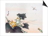 Dragonfly and a Pumpkin Blossom Art by Ogata Gekko
