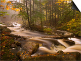 Flowing Streams Along the Appalachian Trail, East Arlington, Vermont, USA Posters by Joe Restuccia III