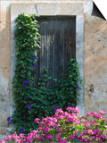Detail of Old House, Assos, Kefalonia, Ionian Islands, Greece Prints by Walter Bibikow