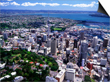 Albert Park and Auckland CBD, New Zealand Prints by David Wall