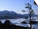 Cannon Beach from Ecola State Park, Oregon, USA Art by Janell Davidson