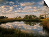 Chimney Creek Reflections, Tybee Island, Savannah, Georgia Prints by Joanne Wells