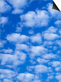 Cumulus Cloud Pattern Art by Adam Jones