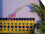 Tiled Wall near Pool, Hotel Mediomundo, Merida, Yucatan, Mexico Plakater af Julie Eggers