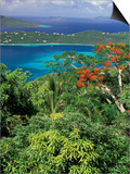 Magens Bay, St. Thomas, Caribbean Poster von Robin Hill