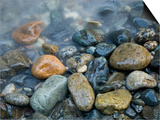 Rocks at edge of river, Eagle Falls, Snohomish County, Washington State, USA Posters by Corey Hilz
