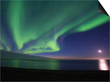 Aurora Borealis, Arctic National Wildlife Refuge, Alaska, USA Posters by Hugh Rose