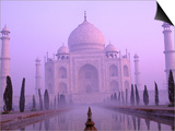 Taj Mahal at Dawn, Agra, India Poster by Pete Oxford