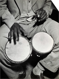 Man Playing the Bongo Drums Prints by Charles Rotkin