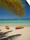 Kayaks on the Beach, Plantation Island Resort, Malolo Lailai Island, Mamanuca Islands, Fiji Poster by David Wall