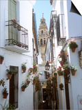 Calleja De Las Flores (Flower Alley), Spain Prints by Lynn Seldon