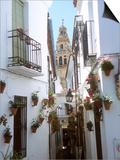 Calleja De Las Flores (Flower Alley), Spain Prints by Lynn Seldon