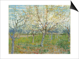 The Pink Orchard Prints by Vincent van Gogh