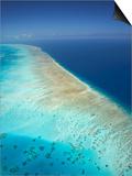 Arlington Reef, Great Barrier Reef Marine Park, North Queensland, Australia Prints by David Wall