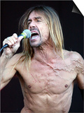 Iggy Pop August 2001 Performing on Stage at the Gig on the Green Festival in Glasgow Green Print