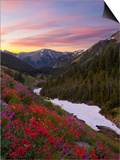 Badger Valley Sunrise, Olympic National Park, Washington, USA Posters by Gary Luhm