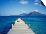 View from Turtle Bay, St. Kitts, Caribbean Prints by David Herbig