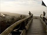 Driftwood Bridge Entrance from Trail, Kalaloch Beach, Olympic National Park, Washington, USA Art par Trish Drury