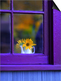 Window with Sunflowers in Vase Prints by Steve Terrill