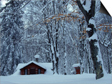 Log Cabin in Snowy Woods, Chippewa County, Michigan, USA Prints by Claudia Adams