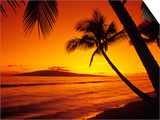 Colorful Sunset in a Tropical Paradise, Maui Hawaii, USA Posters by Jerry Ginsberg