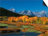 Mt. Moren, Oxbow Bend, Grand Tetons National Park, Wyoming, USA Poster von Dee Ann Pederson