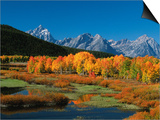 Mt. Moren, Oxbow Bend, Grand Tetons National Park, Wyoming, USA Poster by Dee Ann Pederson