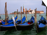 Gondolas near Piazza San Marco, Venice, Italy Prints by Tom Haseltine